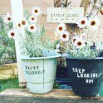 庭作りDIY!憧れの特別な空間を目指してガーデニングに挑戦。